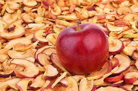 リンゴドライフルーツ